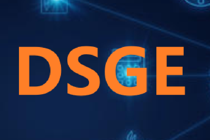 ⏩ DSGE 模型及应用 DSGE