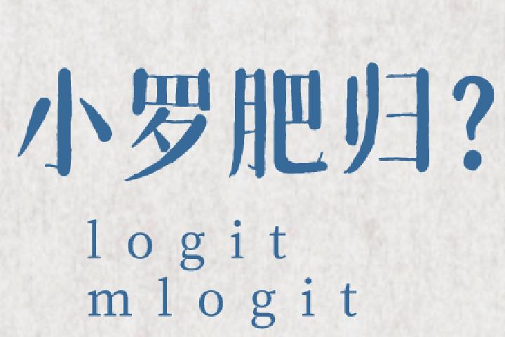 秒懂小罗肥归:logit与mlogit详解